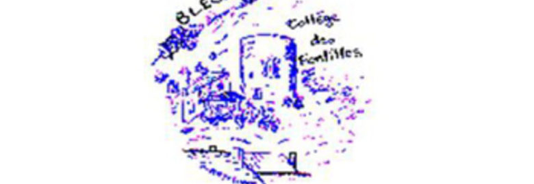 Association sportive du collège de Blesle